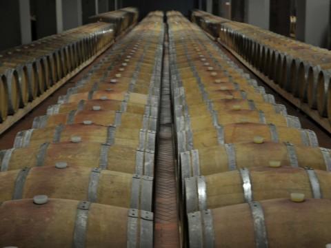 Botti / barrels